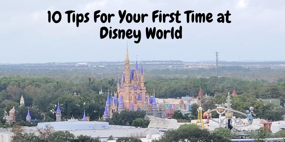 10 Tips For Your First Time At Disney World Tips 1