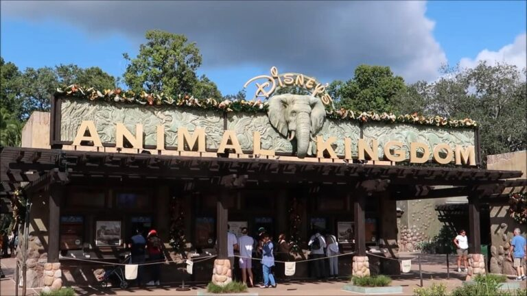 Animal Kingdom Winter Festival Guide