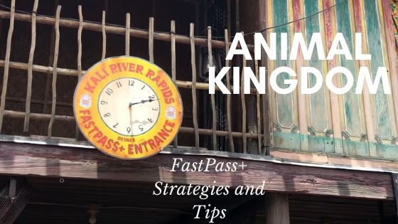 Animal Kingdom FastPass+ Strategies and Tips