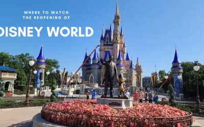 Where To Watch The Disney World Reopening