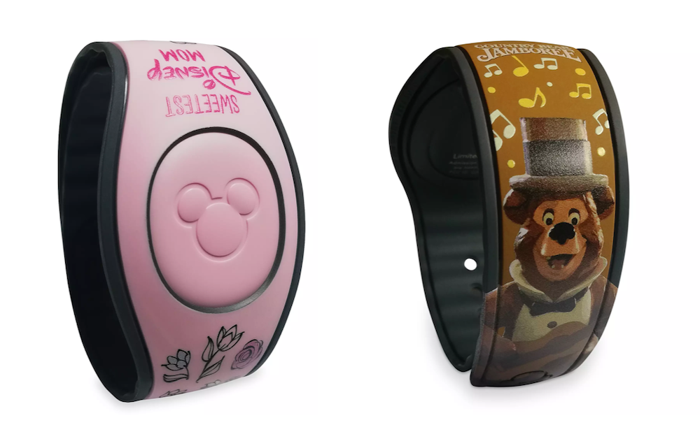 7 Things To Do With Your Magic Bands After Your WDW Visit Tips 3