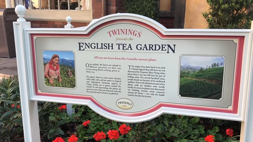 english tea tour epcot flower and garden
