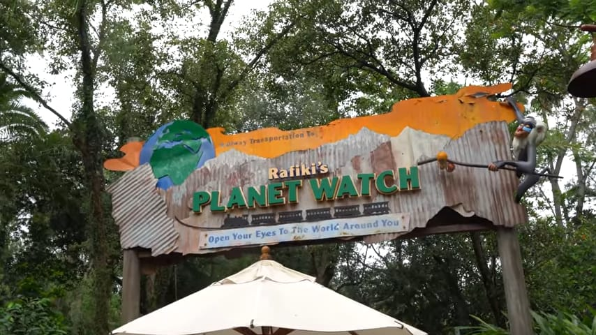Complete Guide To Disney's Animal Kingdom Attractions and Rides 7
