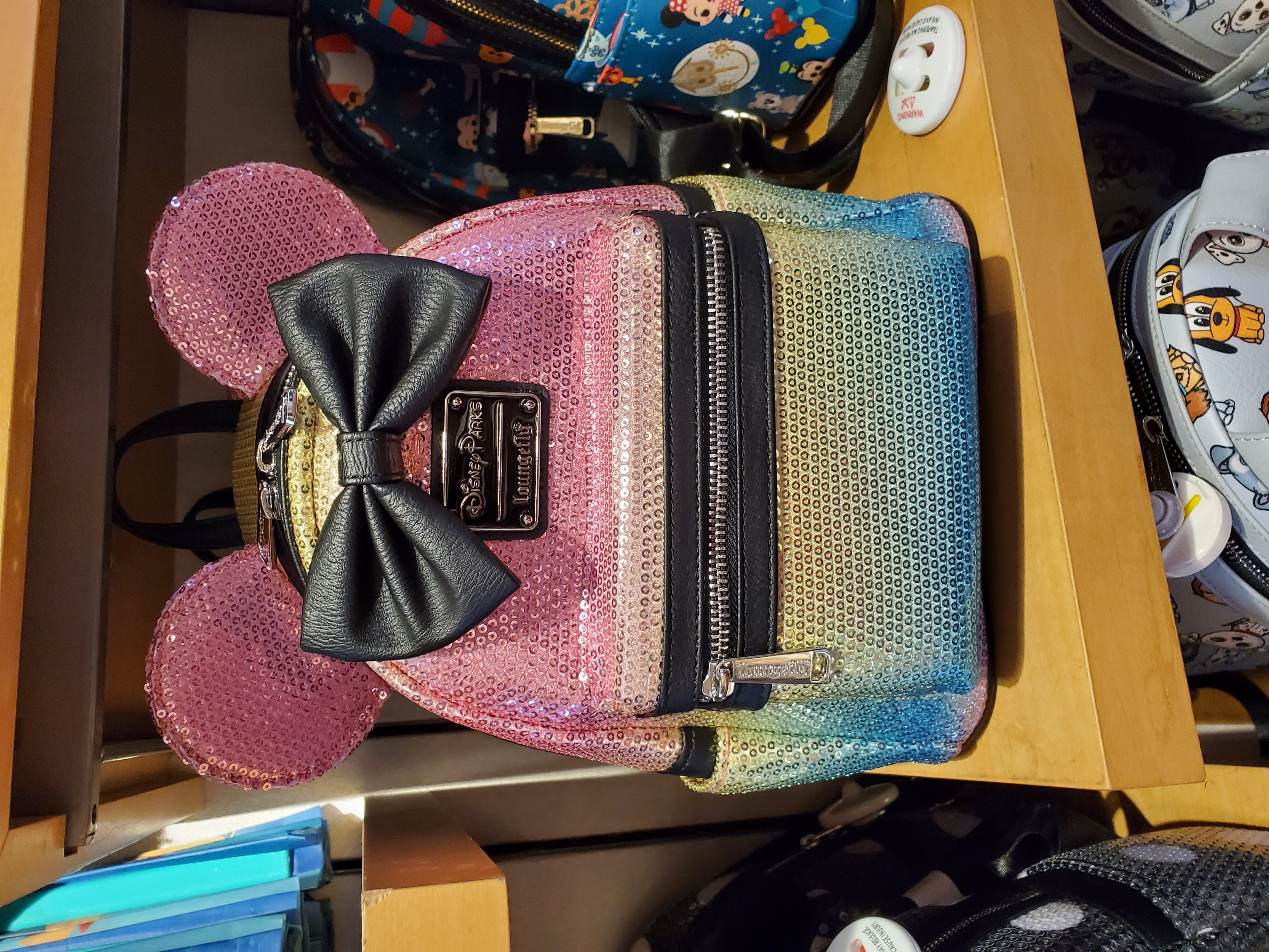 What To Pack In Your Disney World Park Bag Tips 3