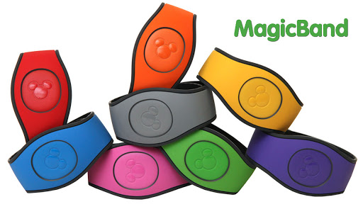 7 Things To Do With Your Magic Bands After Your WDW Visit Tips 4
